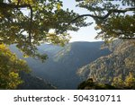 black forest  germany | Shutterstock . vector #504310711