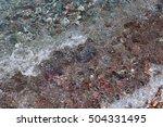 Sea Pebbles In Water