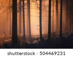 scary orange yellow foggy light ... | Shutterstock . vector #504469231