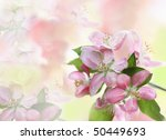 Beautiful spring background with room for text. - stock photo