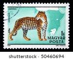hungary   circa 1981  a stamp... | Shutterstock . vector #50460694