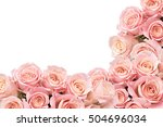 Border Of Soft Roses With Spac...