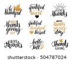 vector thanksgiving lettering... | Shutterstock .eps vector #504787024