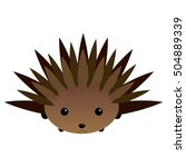isolated cute porcupine on a... | Shutterstock .eps vector #504889339