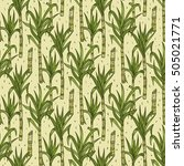 hand drawn sugarcane plants... | Shutterstock .eps vector #505021771