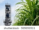 Small photo of Sugarcane tree and airflow meter