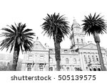 in south africa close up of the ... | Shutterstock . vector #505139575