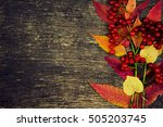 Composition Of Guelder Rose An...