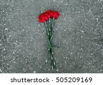Red Carnations Flowers Lie On...