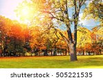 autumn picturesque landscape  ... | Shutterstock . vector #505221535