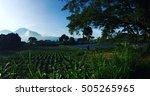 volcano batur  bali | Shutterstock . vector #505265965