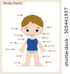 boy body parts diagram poster | Shutterstock .eps vector #505441957