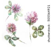 Watercolor Clover Set. Four...