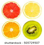 citrus fruit set   grapefruit ... | Shutterstock . vector #505729507