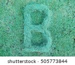 grass letter b isolated on...