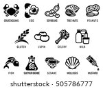 food allergy icons including... | Shutterstock .eps vector #505786777