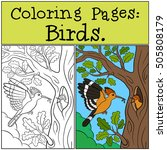 Coloring Pages  Birds. Mother...