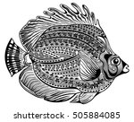 round ornamental fish   Shutterstock .eps vector #505884085