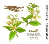 vanilla vector set | Shutterstock .eps vector #505913329