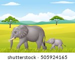 cartoon funny elephant in the... | Shutterstock .eps vector #505924165