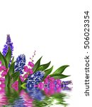blue lupines beautiful flowers... | Shutterstock . vector #506023354