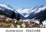 A Beautiful Mountain Landscape...