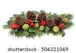 winter flora and christmas... | Shutterstock . vector #506221069