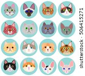 Cat Face Set With Circle
