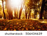 yellow  orange and red autumn... | Shutterstock . vector #506434639