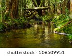 rivers canals and creeks... | Shutterstock . vector #506509951
