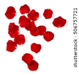 Stock photo red rose petals with drops of water isolated on white background 506757721