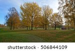 trees in autumn colors at the... | Shutterstock . vector #506844109