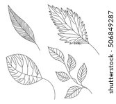 set of structural linen leaves  ... | Shutterstock .eps vector #506849287