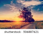 spring summer background  ... | Shutterstock . vector #506887621