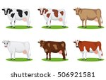 set of different breeds cows ... | Shutterstock .eps vector #506921581