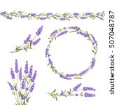 set of lavender flowers... | Shutterstock .eps vector #507048787