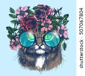 Maine Coon Cat Portrait With...