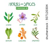 herbs and spices collection 15. ... | Shutterstock .eps vector #507120304