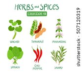 herbs and spices collection 13. ... | Shutterstock .eps vector #507120319