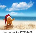 Starfish In Red Santa Hat At...
