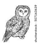 owl hand drawn  black and white ... | Shutterstock .eps vector #507163639