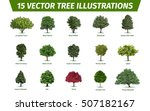 different tree sorts with names.... | Shutterstock .eps vector #507182167