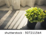 home interior green plant... | Shutterstock . vector #507211564