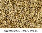Dried Fennel Seeds As An...