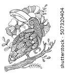 Toucan Bird Coloring Book For...
