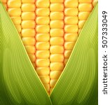 Sweet Corn Texture Pattern...