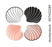 Sea Shells Color Variations...