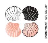 Sea Shells Color Variations...