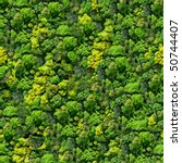 Forest Seamless Pattern   View...