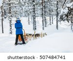 Sledding With Husky Dogs In...